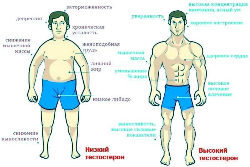 простатит и низкий уровень тестостерона